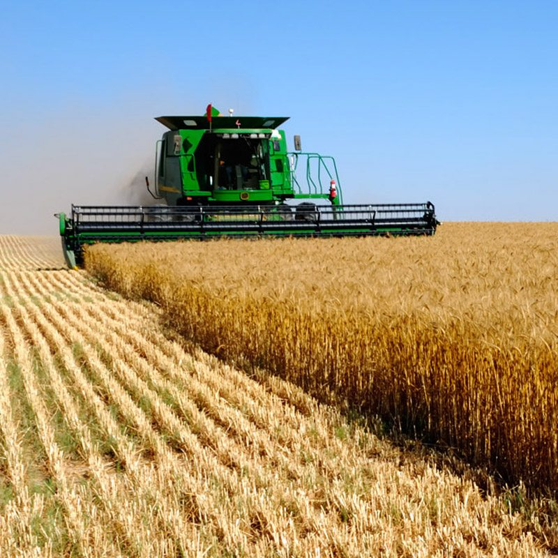Agriculture featured image