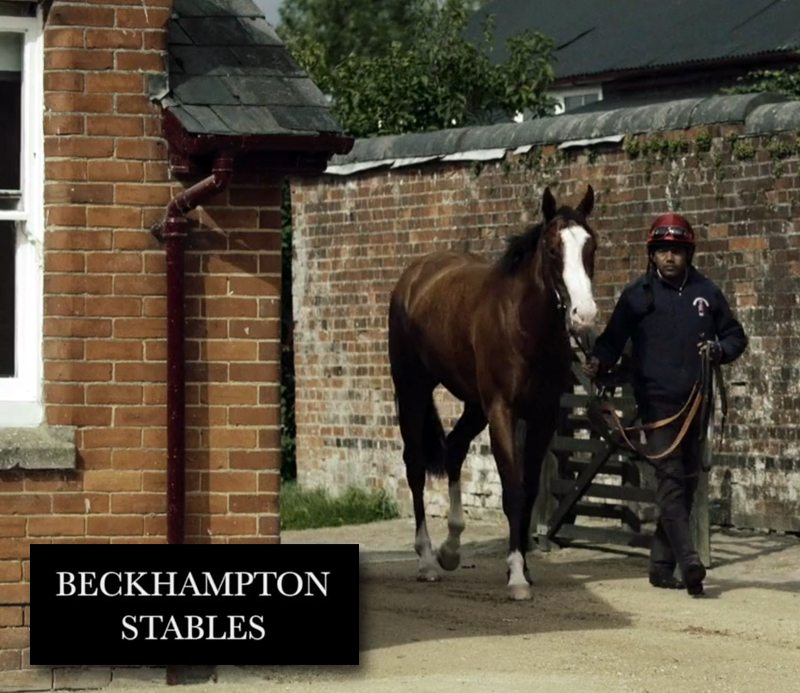 Digital Upgrade for Champion Stables featured image